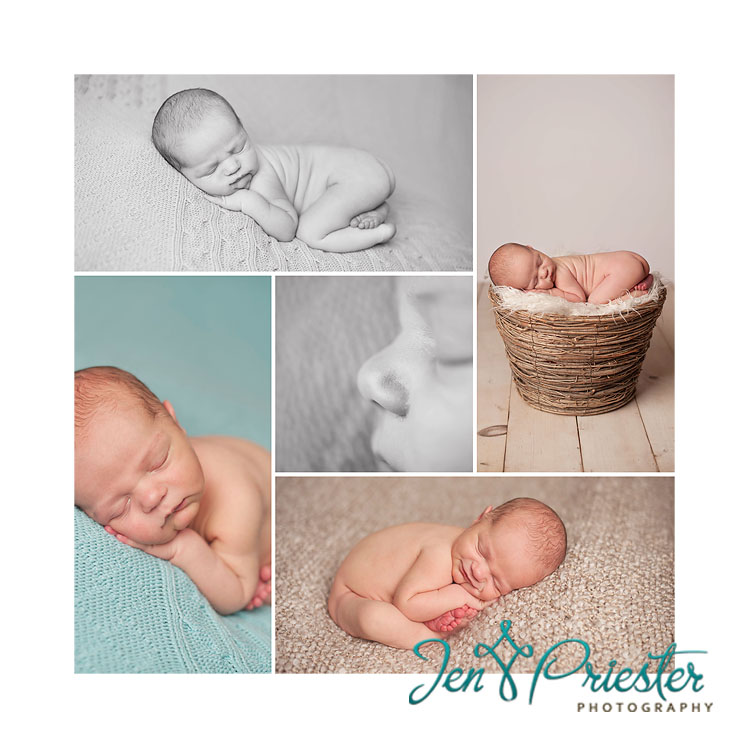 toledo oh newborn photographer