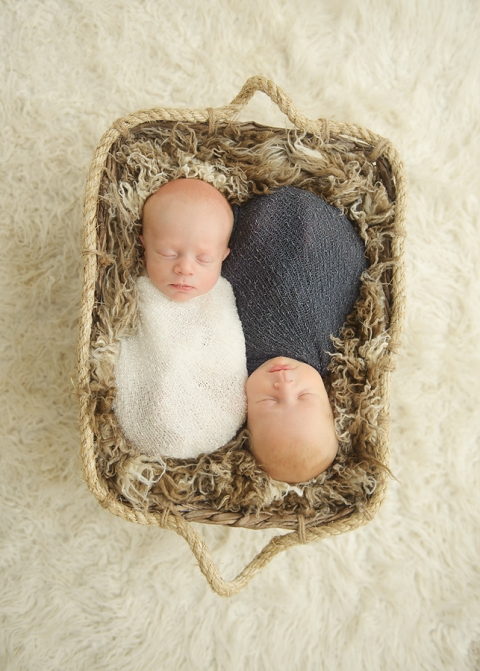 Michigan Newborn Twin Photographer