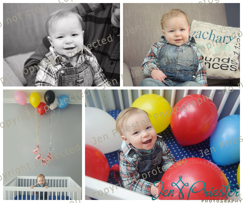 Macomb Michigan Baby and First Birthday Photography