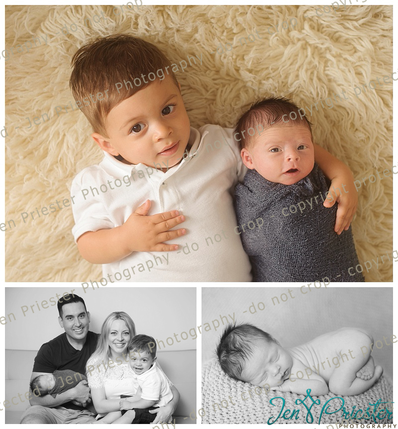 Royal oak mi newborn photographer jen priester photography michigan