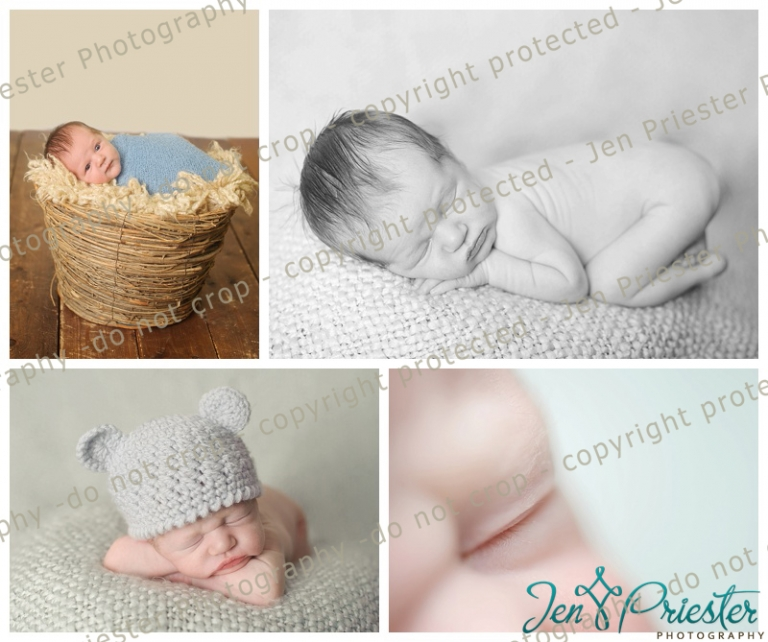 Royal oak newborn photographer royal oak newborn photographer royal oak michigan photographer