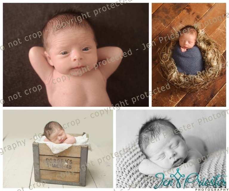 Newborn Photography Royal Oak Mi